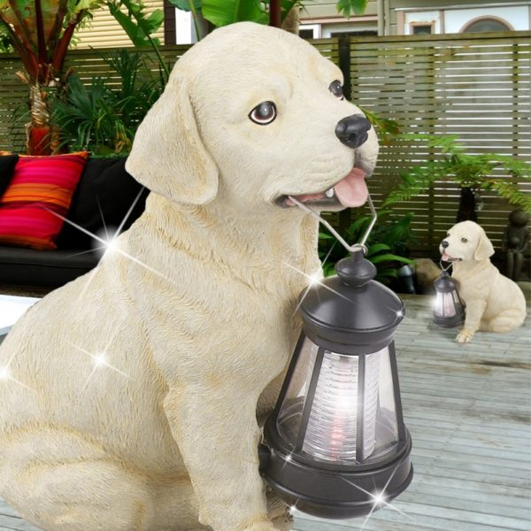 cane-da-giardino-solare.jpg
